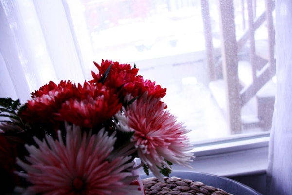 Snow Day Home Inspiration | redleafstyle.com