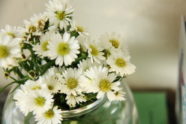 White daisies | redleafstyle.com