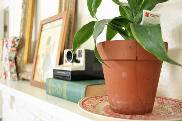 3 Tips to Accessorize Your Home | redleafstyle.com