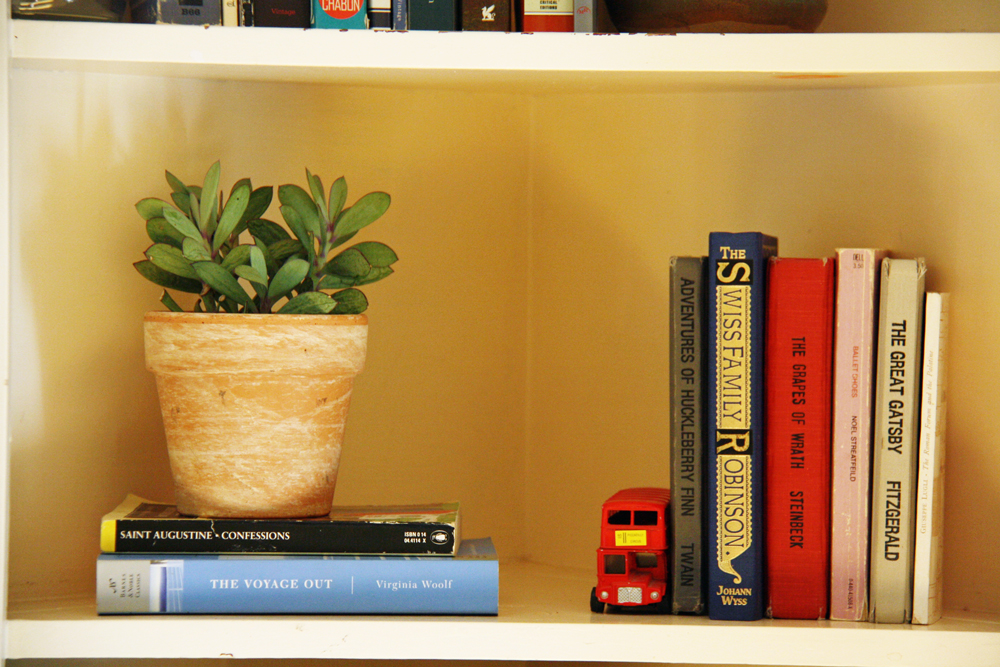 Bookshelf with books and potted plant.