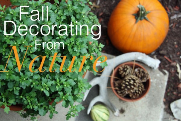 Fall Decorating From Nature | redleafstyle.com