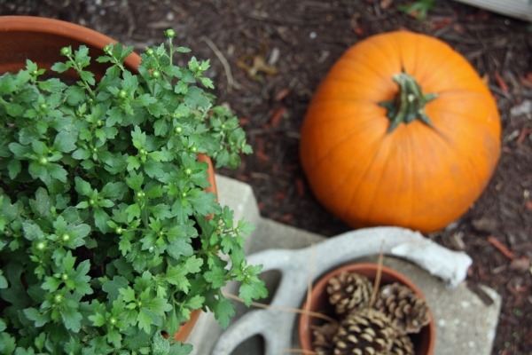 Fall Decorating on the Front Porch | redleafstyle.com